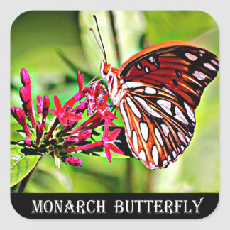 Vermont Monarch Butterfly Square Sticker