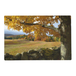 Vermont Views Laminated Place Mat