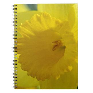 Verocity Spiral Notebook