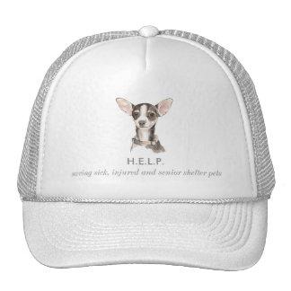 Versatile Everyday, Everwhere Hat