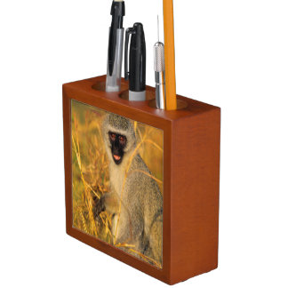 Vervet Monkey (Chlorocebus Pygerythrus) Desk Organizer