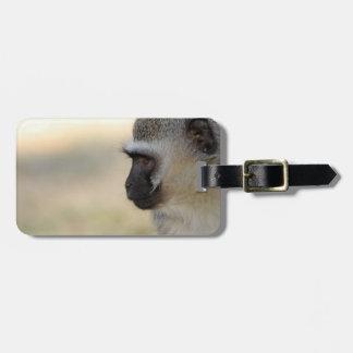 Vervet Monkey Luggage Tag