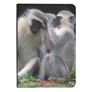 Vervet Monkey's (Cercopithecus Aethiops) Kindle 4 Case