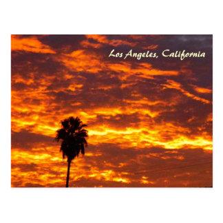 Very Beautiful Los Angeles Postcard! Postcard