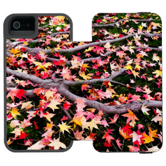 Very Colorful Maple Leaves Incipio Watson™ iPhone 5 Wallet Case
