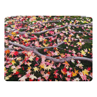 Very Colorful Maple Leaves iPad Pro Cover