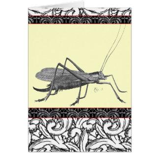 Very Elegant Grasshopper from Antique Print Card