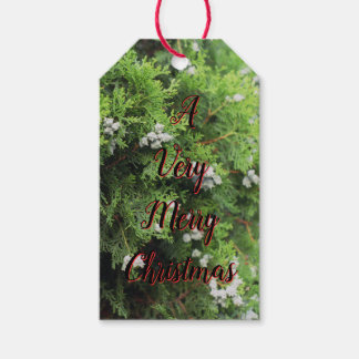 Very Merry Christmas Gift Tags