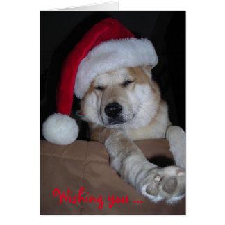 Very Shiba-Inu Christmas card