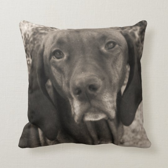 Vesla Throw Pillow