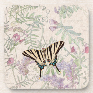 Vetch Pea Flowers Wildlife Butterfly Coaster