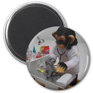 Veterinarian Magnet