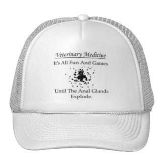 Veterinary Medicine - It's all fun and games until Trucker Hat