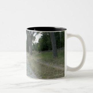 Via Appia  Appian way, roman roadway Two-Tone Coffee Mug