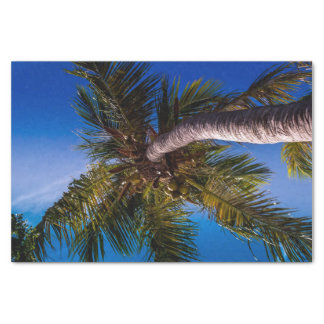 Vibrant Blue Sky Tropical Palm Tree Tissue Paper