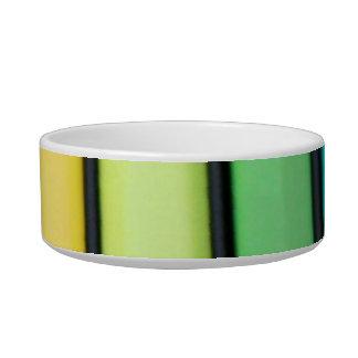 vibrant cat bowl