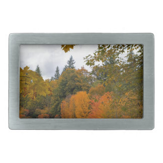 Vibrant Fall Colors in Oregon City Park Belt Buckles