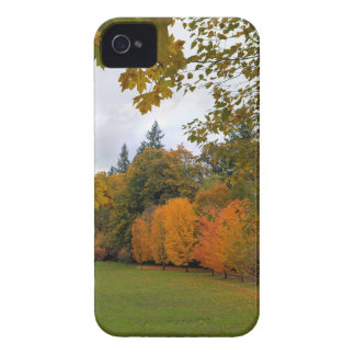 Vibrant Fall Colors in Oregon City Park iPhone 4 Cover