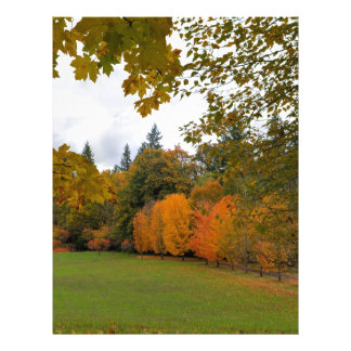 Vibrant Fall Colors in Oregon City Park Letterhead
