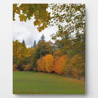 Vibrant Fall Colors in Oregon City Park Plaque