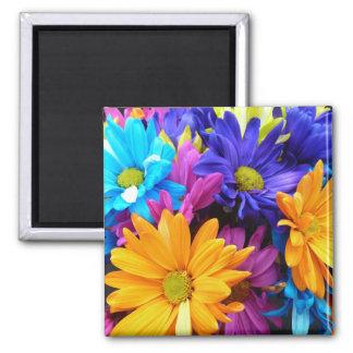 Vibrant Gerbera Daisy Bouquet Square Magnet