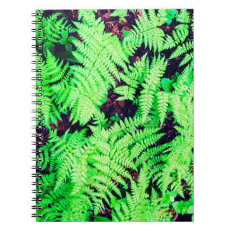 Vibrant Green Ferns Notebook