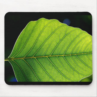 Vibrant Green Leaf Mouse Pad