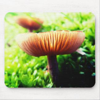 Vibrant Mushroom Mouse Pad
