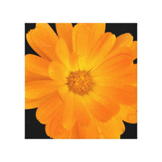 Vibrant Orange Dahlia Canvas Wall Art