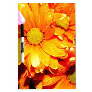 Vibrant Orange Fiore Dry-Erase Whiteboard