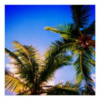 Vibrant Palm Trees Poster