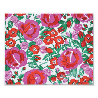 Vibrant Pink and Red Sketched Roses Photograph