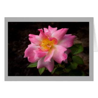 Vibrant pink rose golden center card