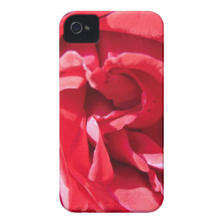 Vibrant Pink Rose Petals iPhone 4 Cover