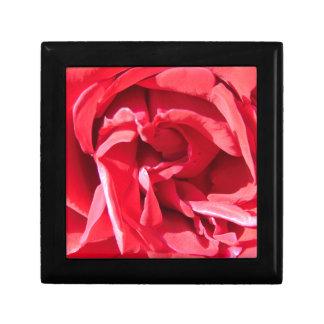 Vibrant Pink Rose Petals Jewelry Box