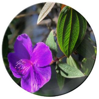 Vibrant Purple Hibiscus Fine Porcelain Plate