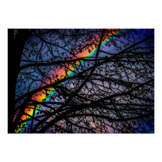 Vibrant Rainbow | Dark Spring Tree | Natural Poster