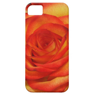 Vibrant Red and Peach Rose Macro Photo Case For The iPhone 5