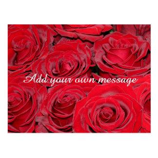 Vibrant Red Roses Postcard