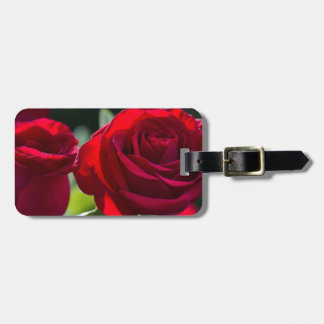 Vibrant Romantic Red Roses Bag Tag