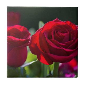 Vibrant Romantic Red Roses Ceramic Tile