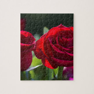 Vibrant Romantic Red Roses Jigsaw Puzzle