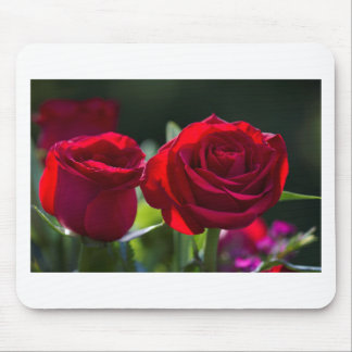 Vibrant Romantic Red Roses Mouse Pad