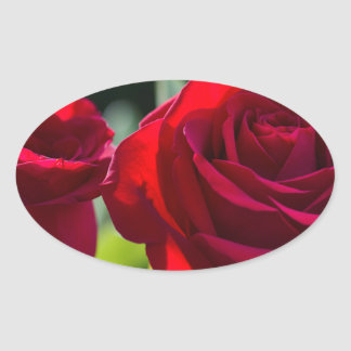 Vibrant Romantic Red Roses Oval Sticker