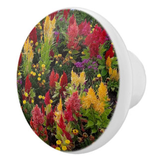 Vibrant Summer Flower Garden in Orlando Florida Ceramic Knob