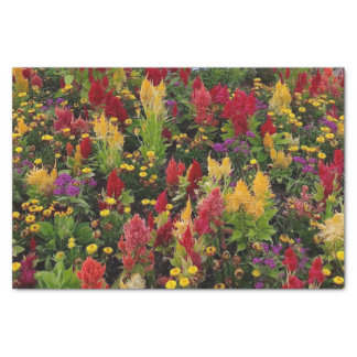Vibrant Summer Flower Garden in Orlando Florida Tissue Paper