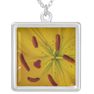 Vibrant Yellow Lily Silver Plated Necklace