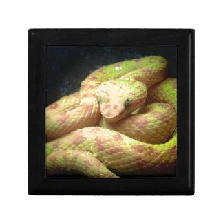 Vibrant Yellow Viper Jewelry Box