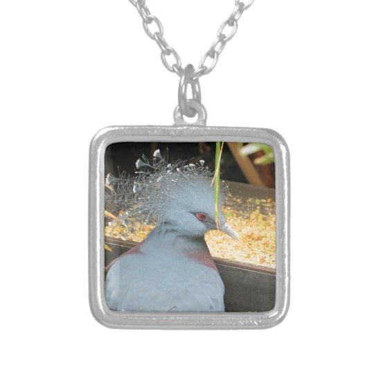 Victoria crowned pigeon silver plated necklace