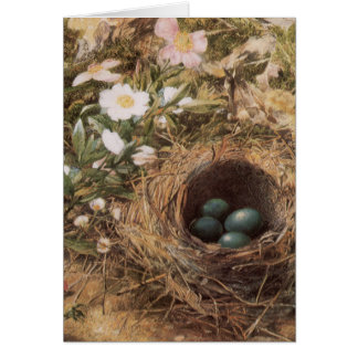 Victorian Art, Birds Nest and Dog Roses by JW Hill Greeting Card